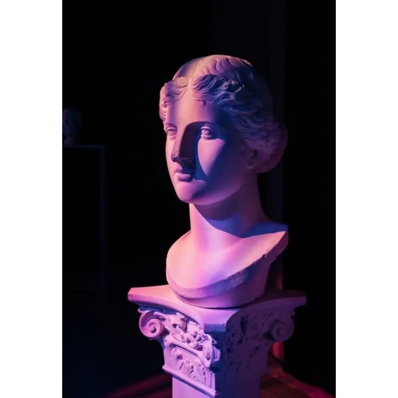 Гипсовая фигура Венера