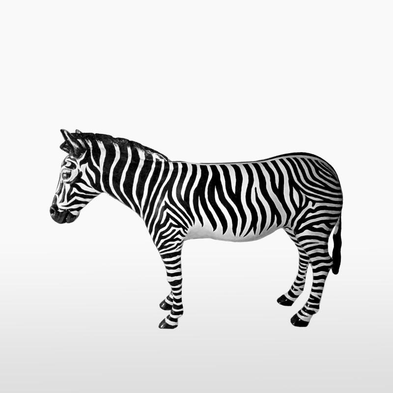 Декоративная зебра