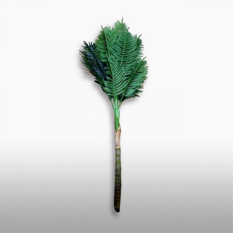 Пальма Финиковая Луиза 4 ствола