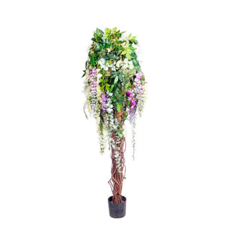 Дерево с цветами Глицинии